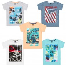 11C141: Infant Boys Printed T-Shirts (2-6 Years)