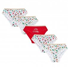 14C956: Older Girls Christmas Design 5 Pack Briefs (7-13 Years)