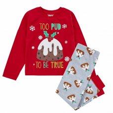 15C525: Infants Christmas Pudding Family Pyjama (2-6 Years)