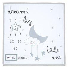 19C226: Baby Milestones 3 Piece Luxury Blanket Set