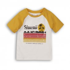 1TRAGLN 3K: Boys Hawaii Raglan Tee (9 Months-3 Years)