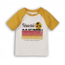 1TRAGLN 3: Boys Hawaii Raglan Tee (9 Months-3 Years)