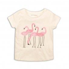 2KTEE13: Girls Flamingos Graphic Tshirt (3-8 Years)