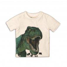 Roar 1: Dinosaur Tshirt (9 Months-3 Years)