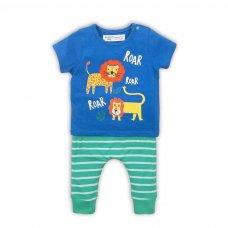 Turtle 6: 2 Piece T-Shirt & Stripe Legging Set (0-12 Months)
