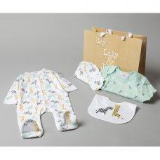 V20976: Baby Unisex Animals 6 Piece Mesh Bag Gift Set (NB-6 Months)