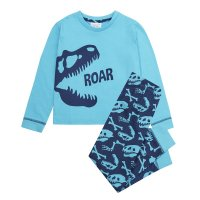 15C458: Infant Boys Dinosaur Pyjama- Roar (2-6 Years)