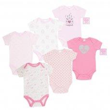 BG122: Girls 3 Pack Bodysuits (NB-9 Months)