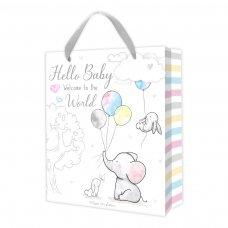 FS824: Baby Gift Bag