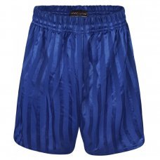 Kids Shadow Stripe PE Shorts - Royal