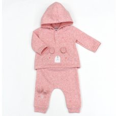 L1057: Baby BGirls Bunny Hooded Top & Pant Set (0-9 Months)