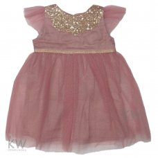 N15783: Baby Girls Net Occasion Dress (3-24 Months)