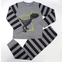L6172: Older Boys Dinosaur Pyjama (7-12 Years)