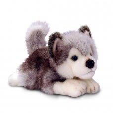 SD4294: 25cm Husky